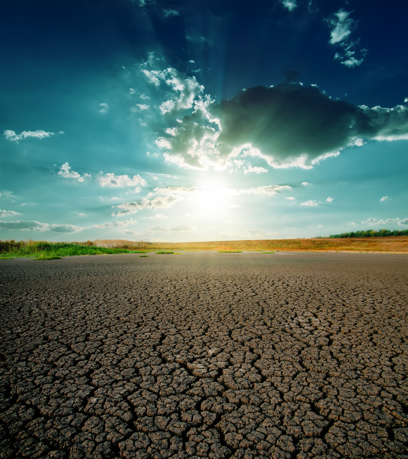 hot_weather_sun_drought