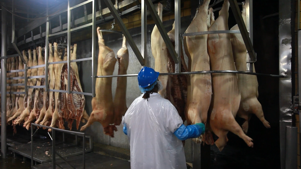 How China maneuvered to buy US pork giant