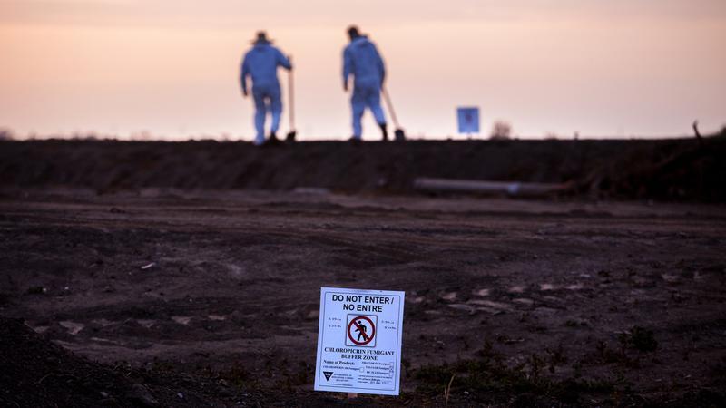 California's 'vomiting gas' pesticide use rose 650 percent in 2 decades